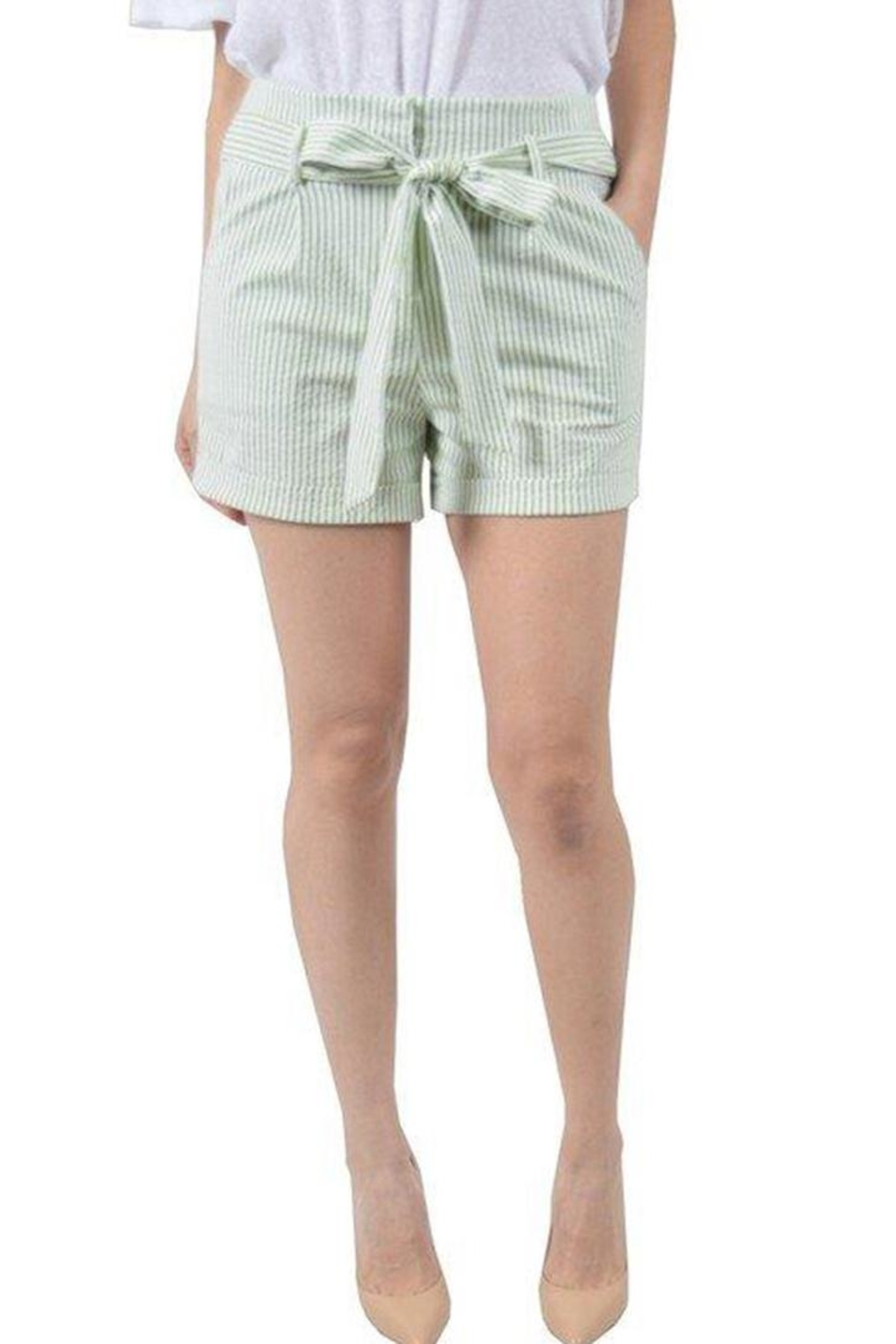 Potter's Pot Striped Shorts - Front Cropped Image