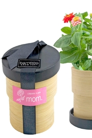 Potting Shed Creations Bamboo Grow Pot - Product Mini Image