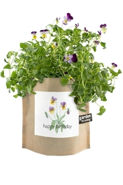 Potting Shed Creations Garden-In-A-Bag - Product Mini Image