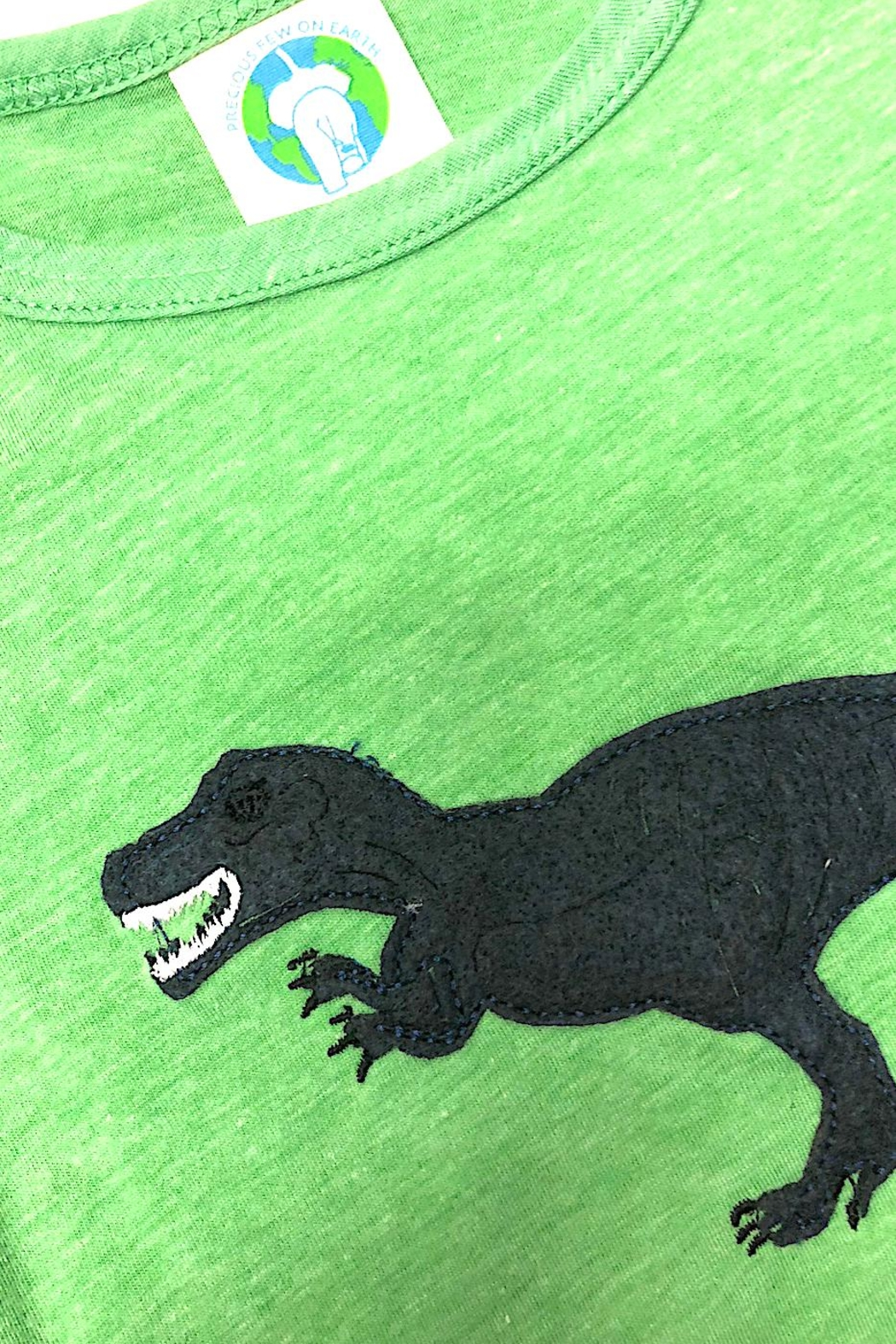Precious Few on Earth Green T-Rex T-Shirt - Front Full Image
