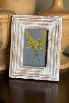 The Birch Tree Pressed Flower Frame - Alternate List Image