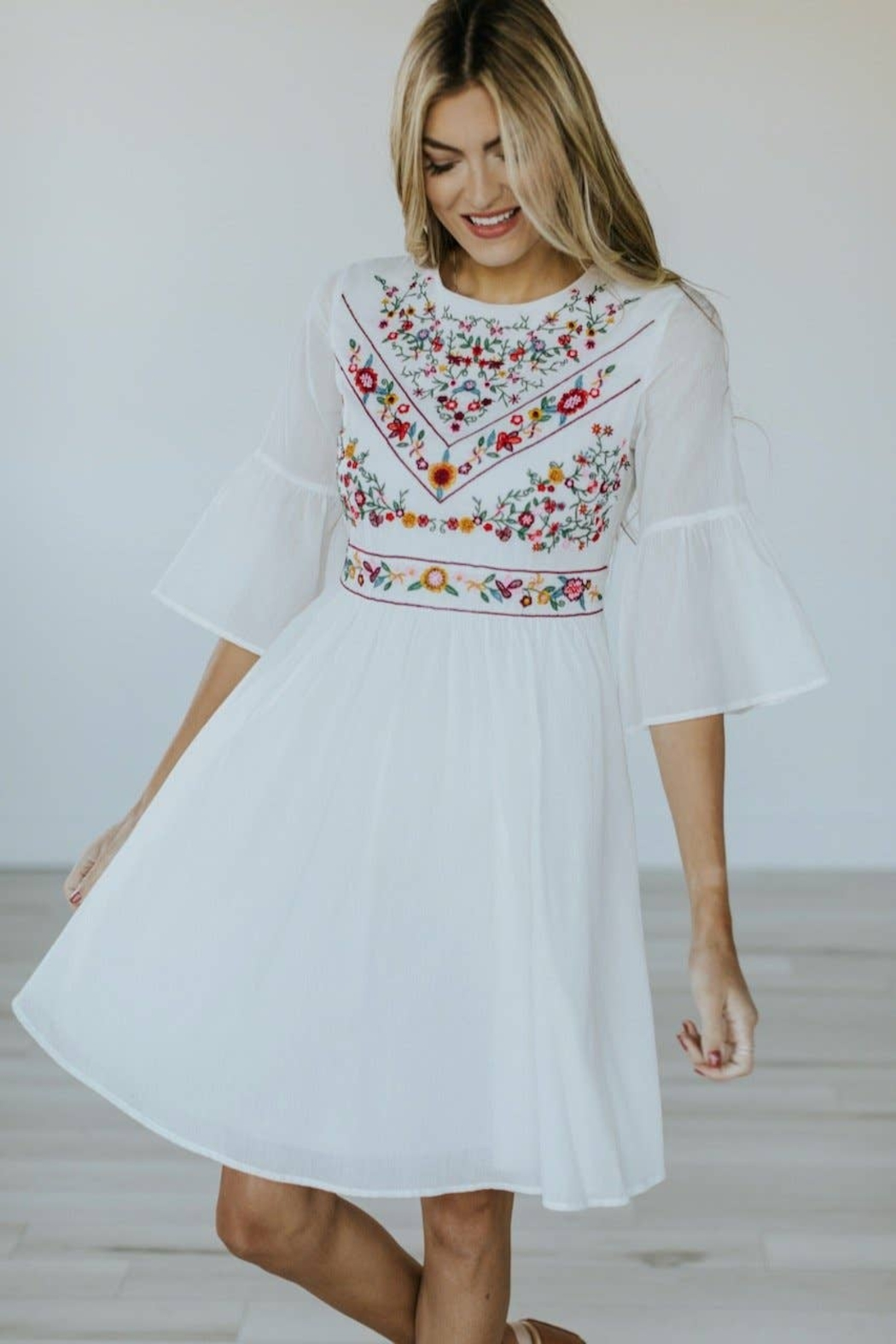 Roolee Pretty Embroidered Dress - Front Cropped Image