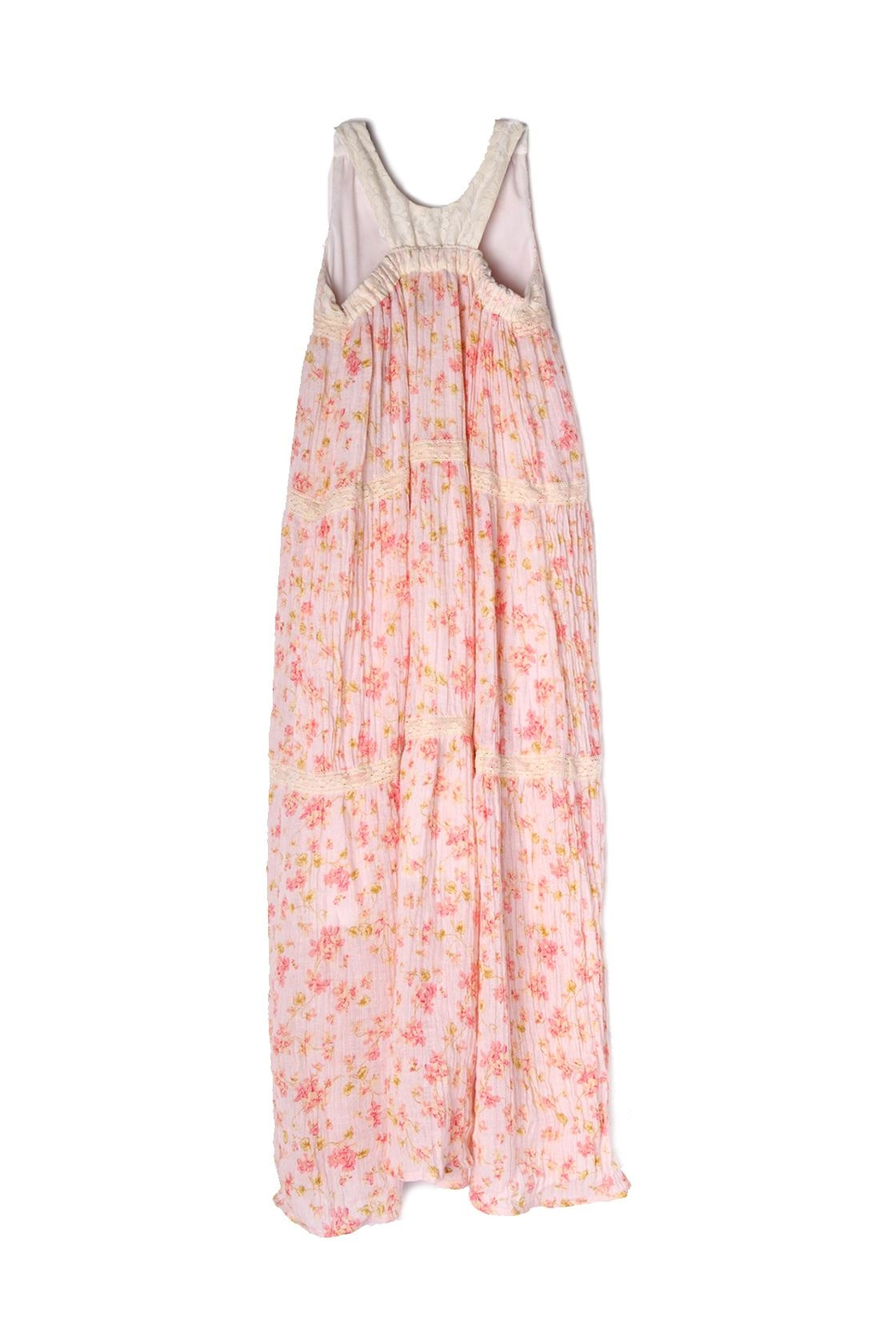 Isobella and Chloe Pretty-In-Pink Maxi Dress - Front Full Image