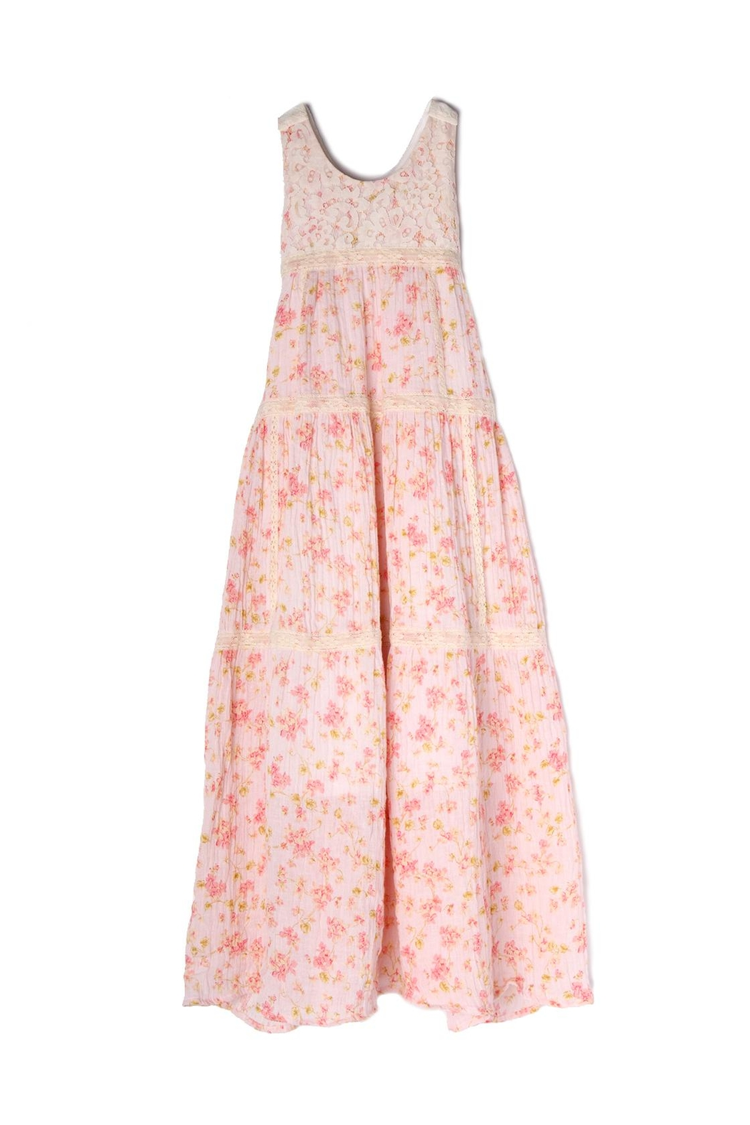 Isobella and Chloe Pretty-In-Pink Maxi Dress - Main Image