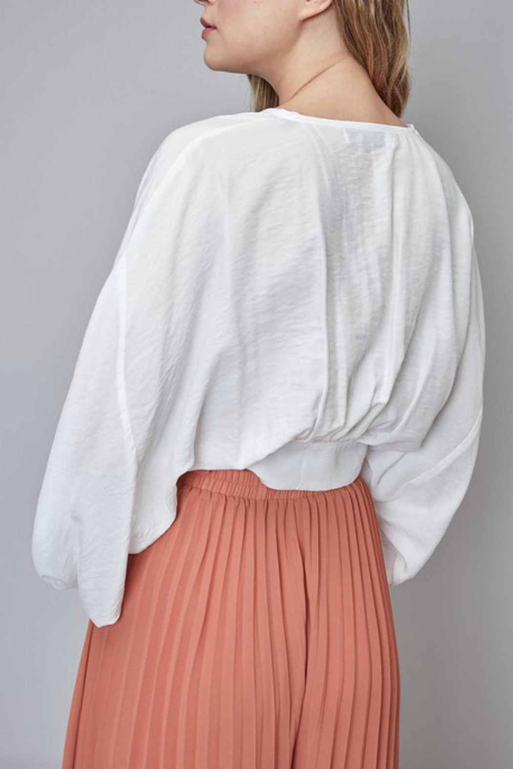 Pretty Little Things Blouse Crop Top - Side Cropped Image