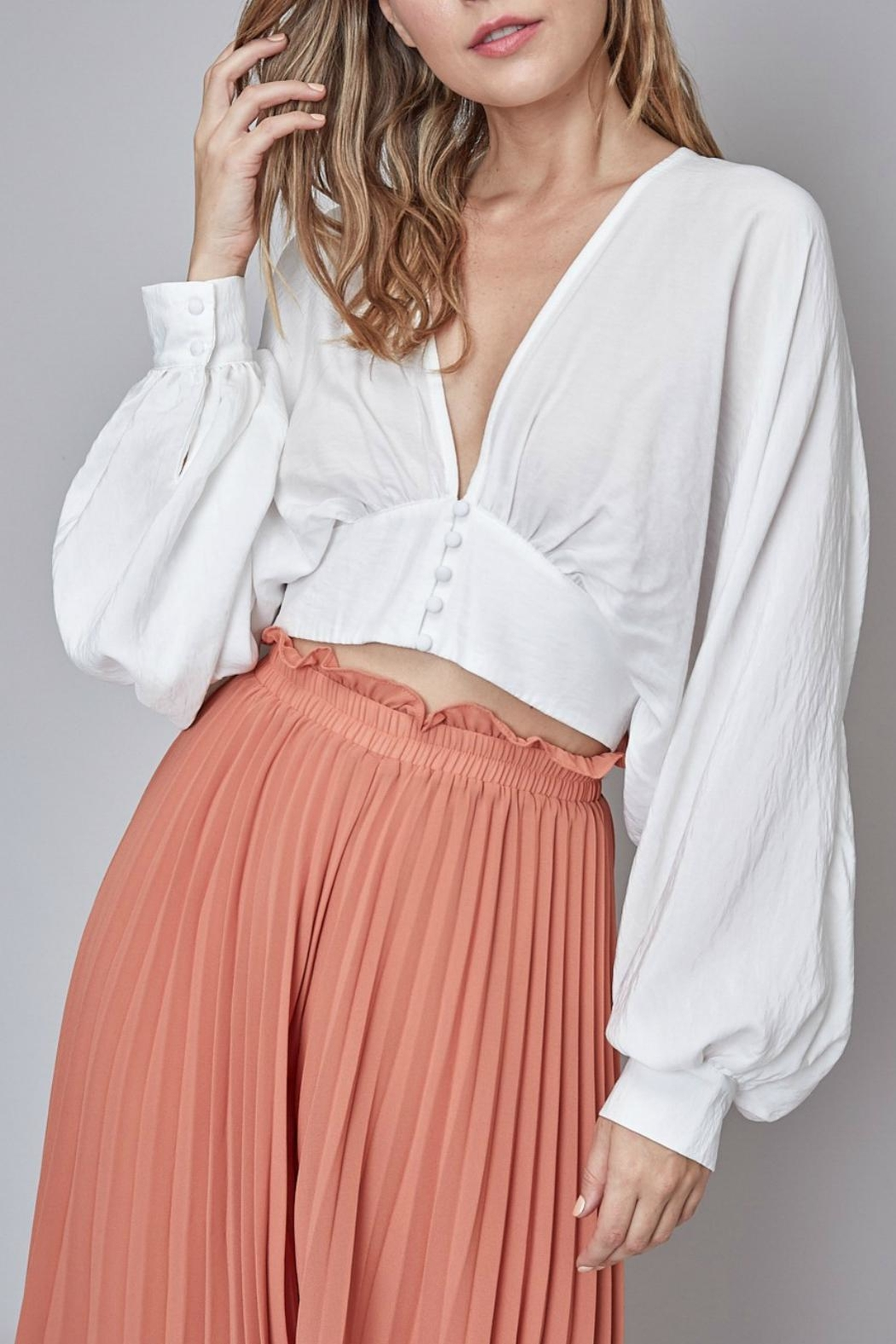 Pretty Little Things Blouse Crop Top - Main Image