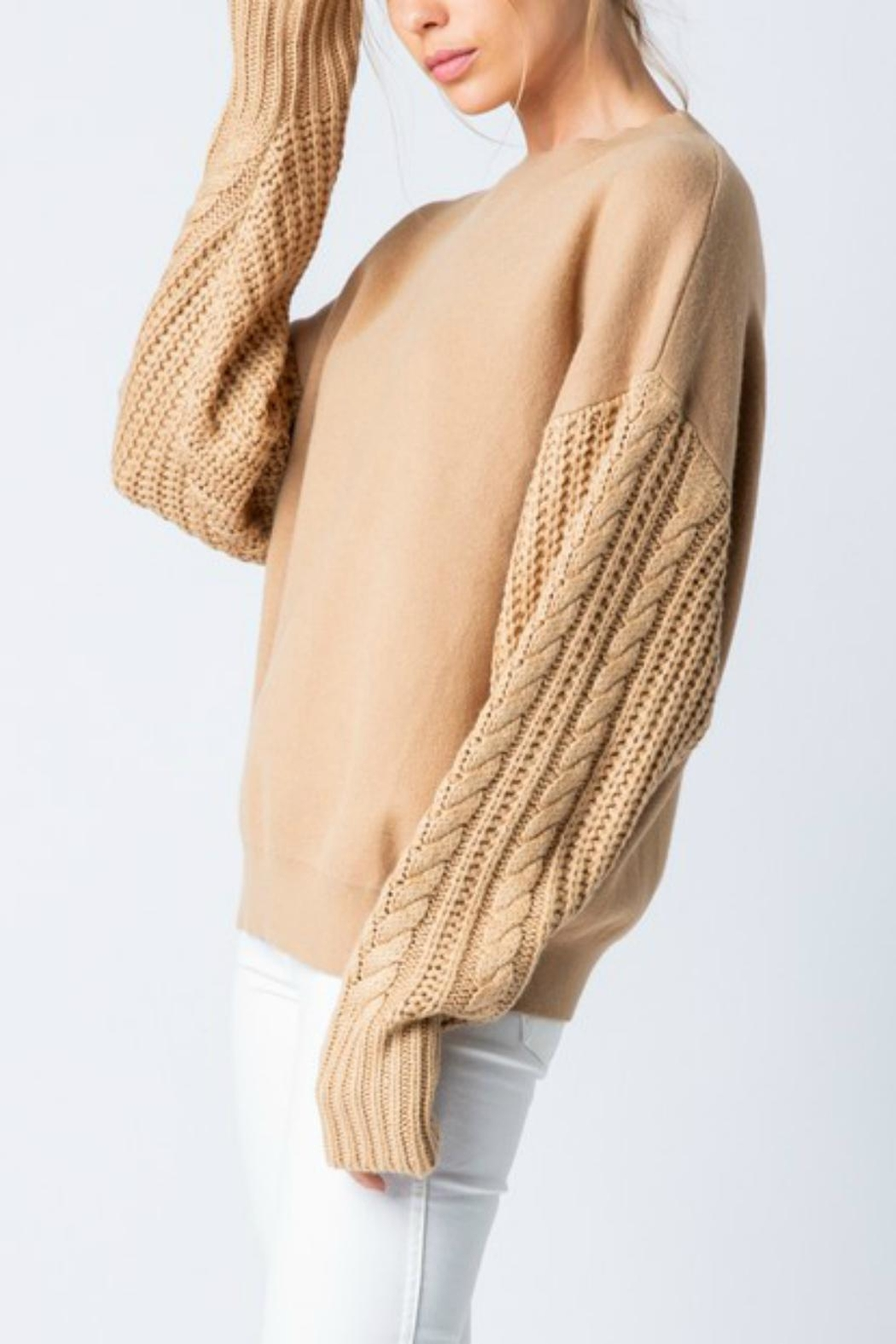 Pretty Little Things Cable Sleeve Sweater - Front Full Image