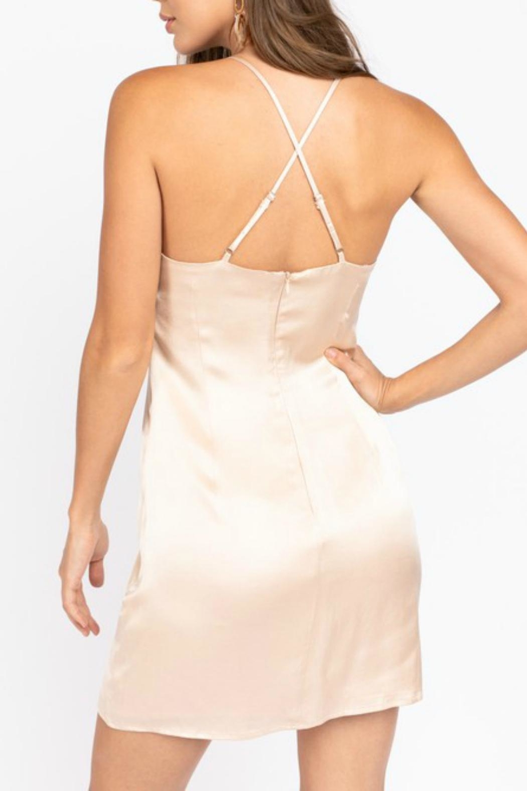 Pretty Little Things Champagne Slip Dress - Front Full Image