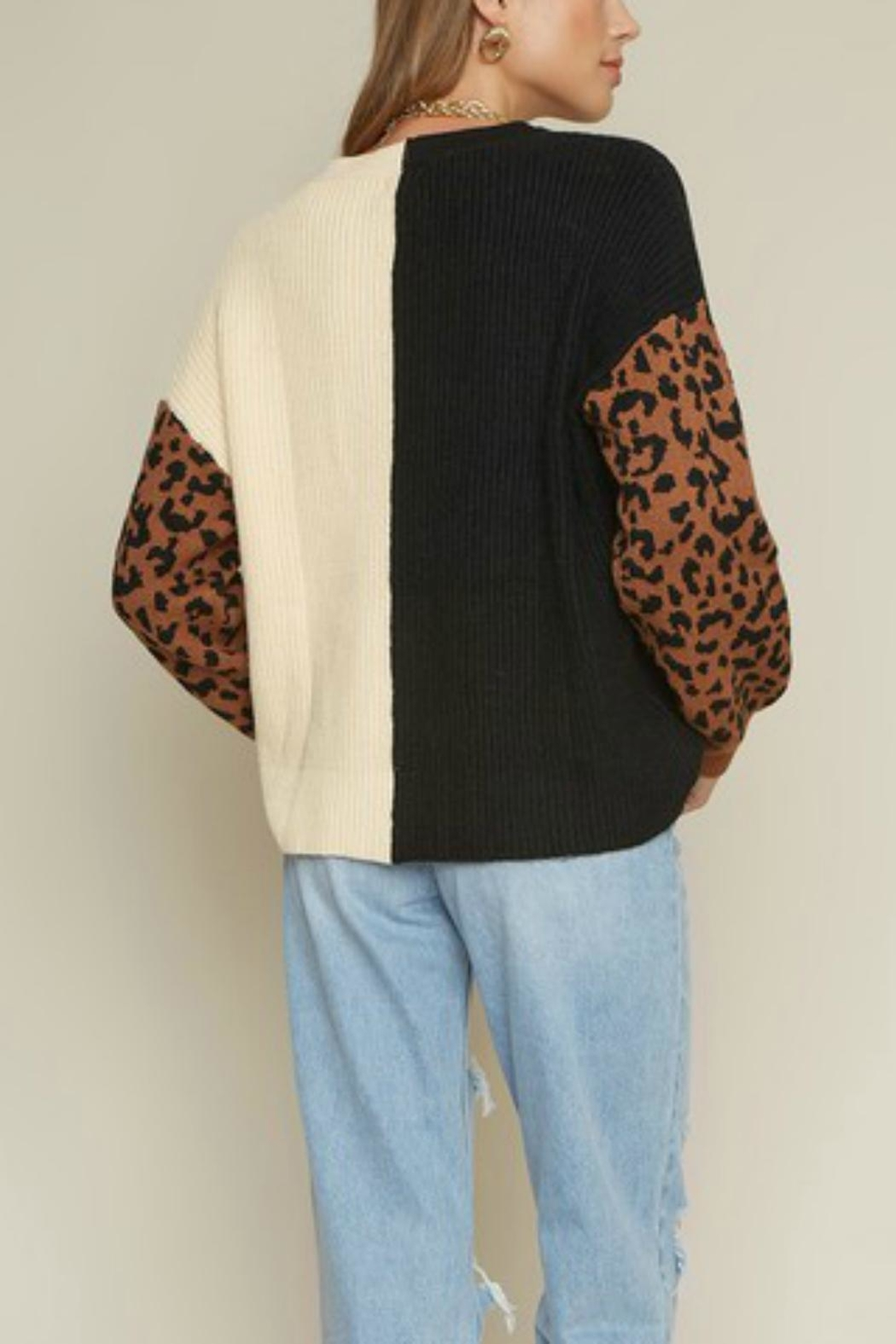 Pretty Little Things Colorblock Leopard Sweater - Front Full Image