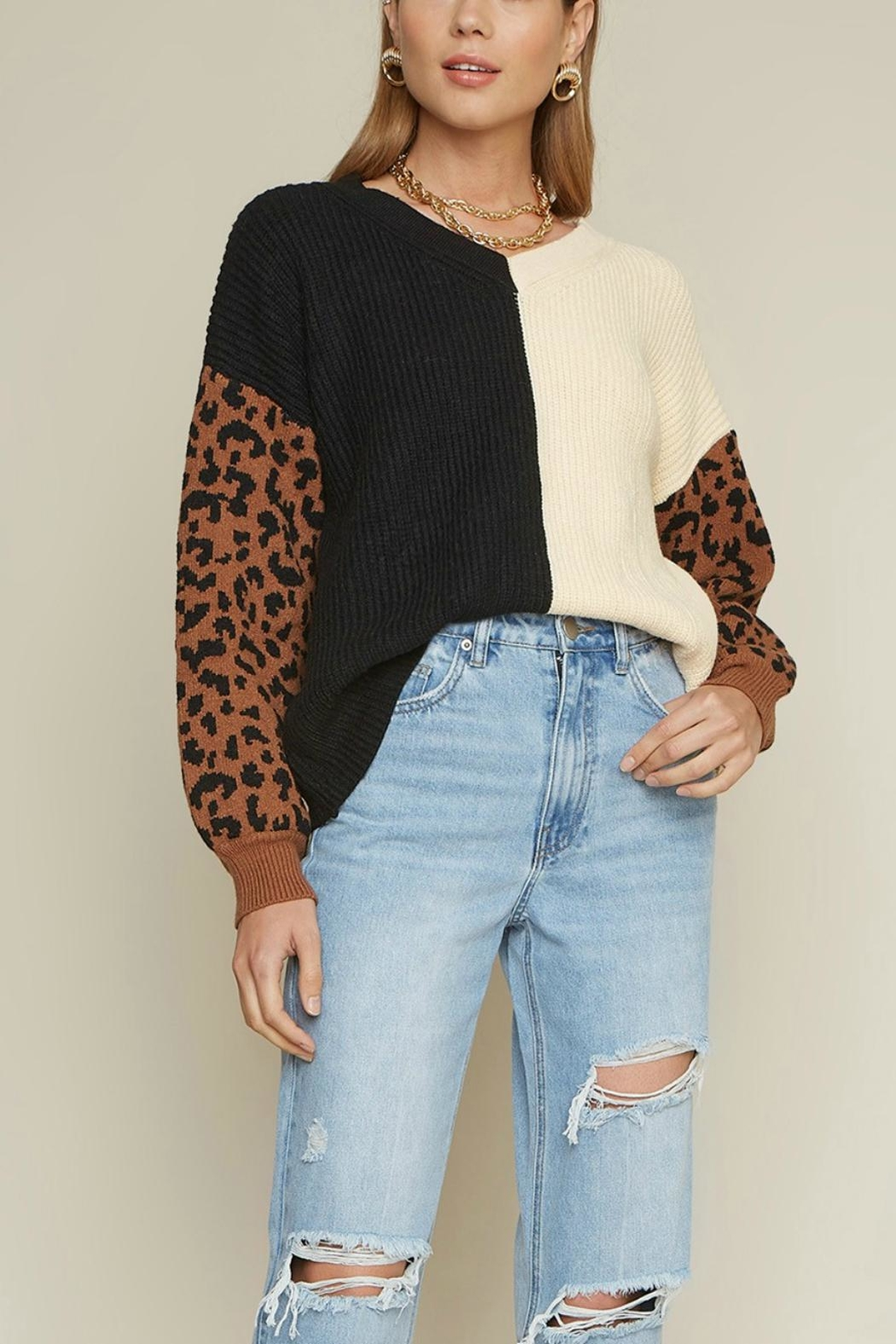 Pretty Little Things Colorblock Leopard Sweater - Main Image