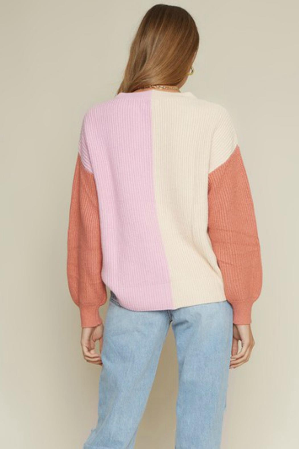 Pretty Little Things Colorblock Sweater - Front Full Image