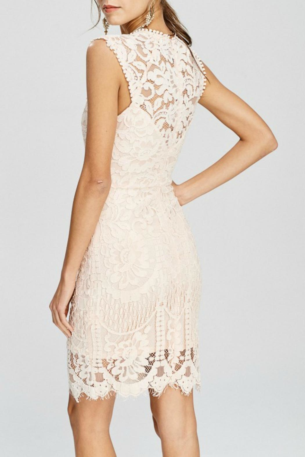Pretty Little Things Crochet Lace Dress - Front Full Image