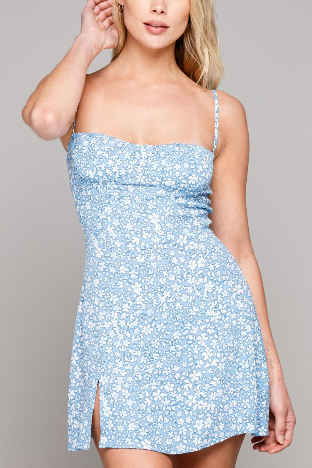 Pretty Little Things Floral Bustier Dress - Main Image