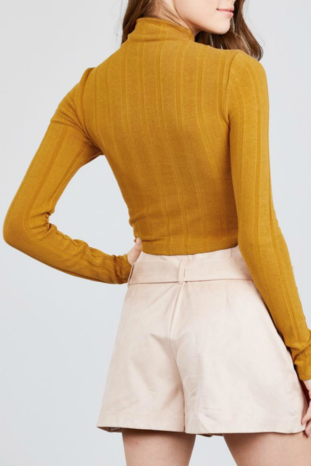 Pretty Little Things Mockneck Crop Top - Front Full Image