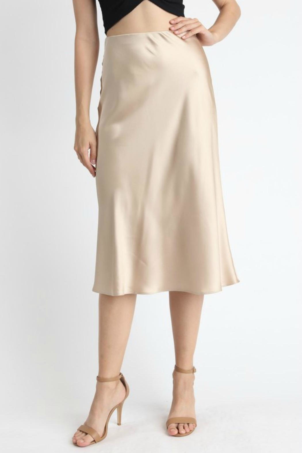 Pretty Little Things Satin Midi Skirt - Front Full Image
