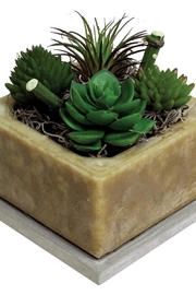 habersham candle Prickly Pear Candle - Front cropped