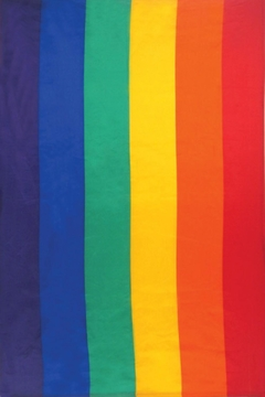Shoptiques Product: Pride Flag Tapestry