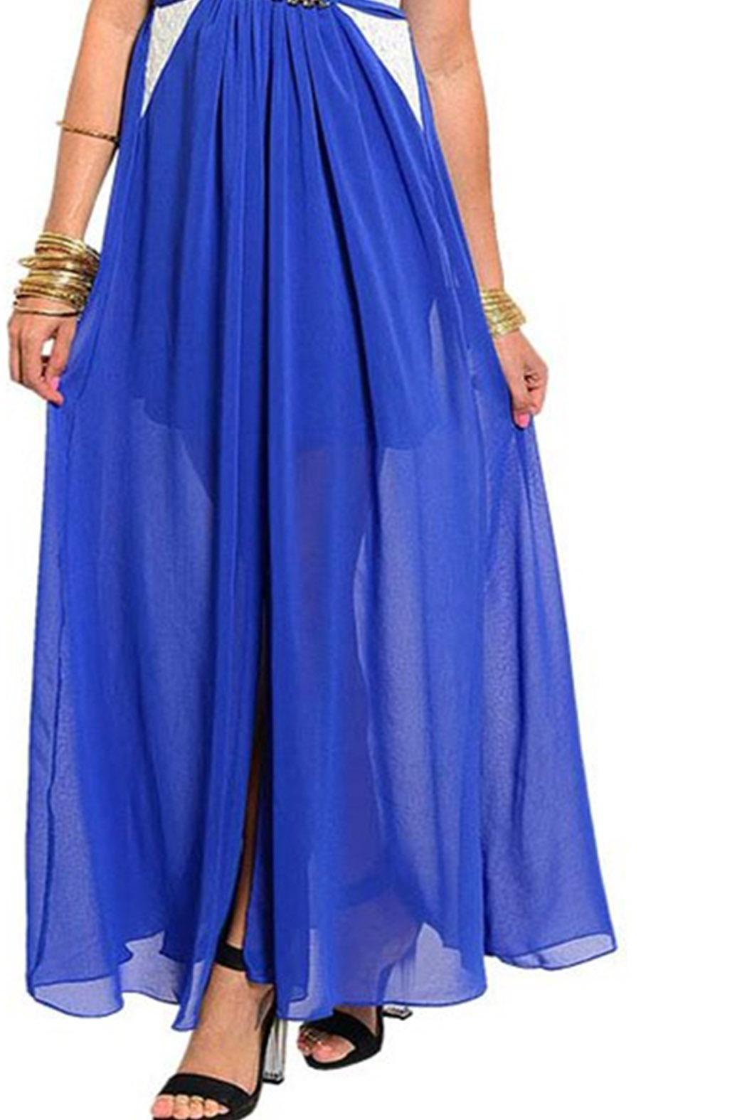 TED Princess Blue Maxi - Side Cropped Image