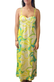 Barbara Gerwit Printed Maxi Dress - Product Mini Image