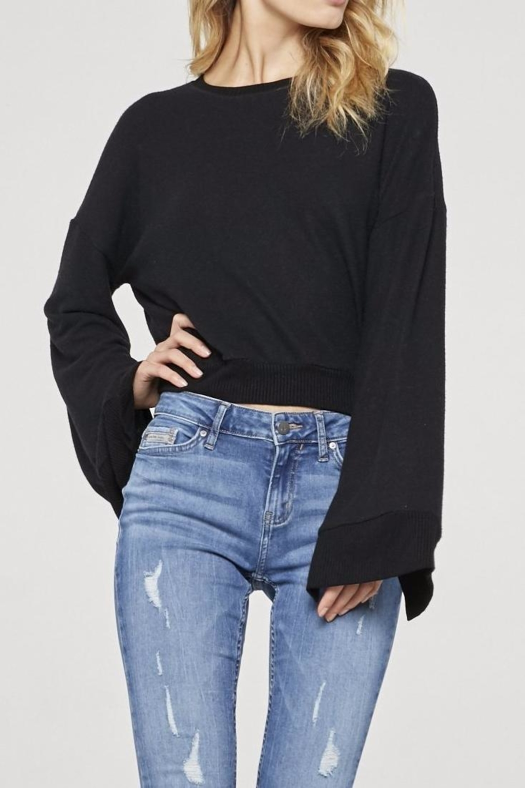 Project Social T Louis Cropped Sweatshirt - Front Cropped Image
