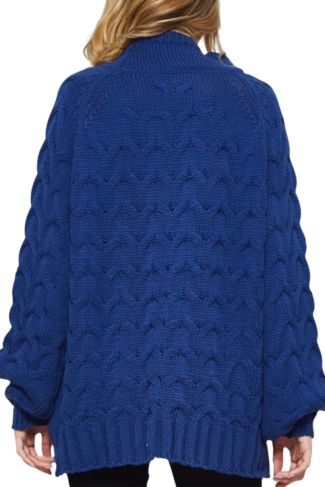 Promesa Cable Knit Sweater - Front Full Image