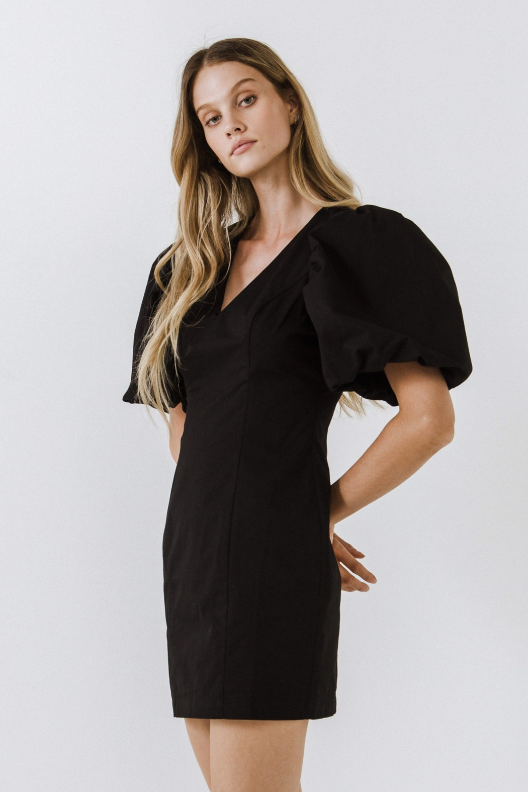Endless Rose Puff Sleeve Dress - Front Full Image