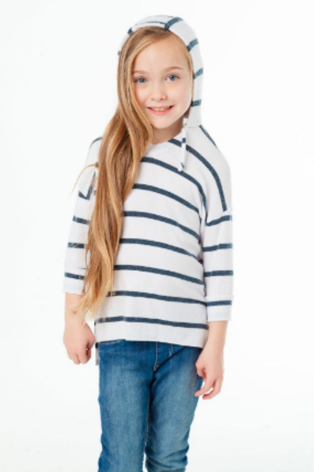 Chaser Pullover Stripe - Main Image