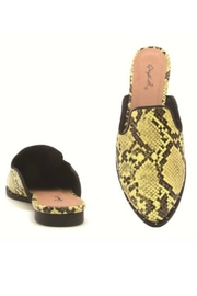 Shoe Addict  Python Mule Slide - Front full body