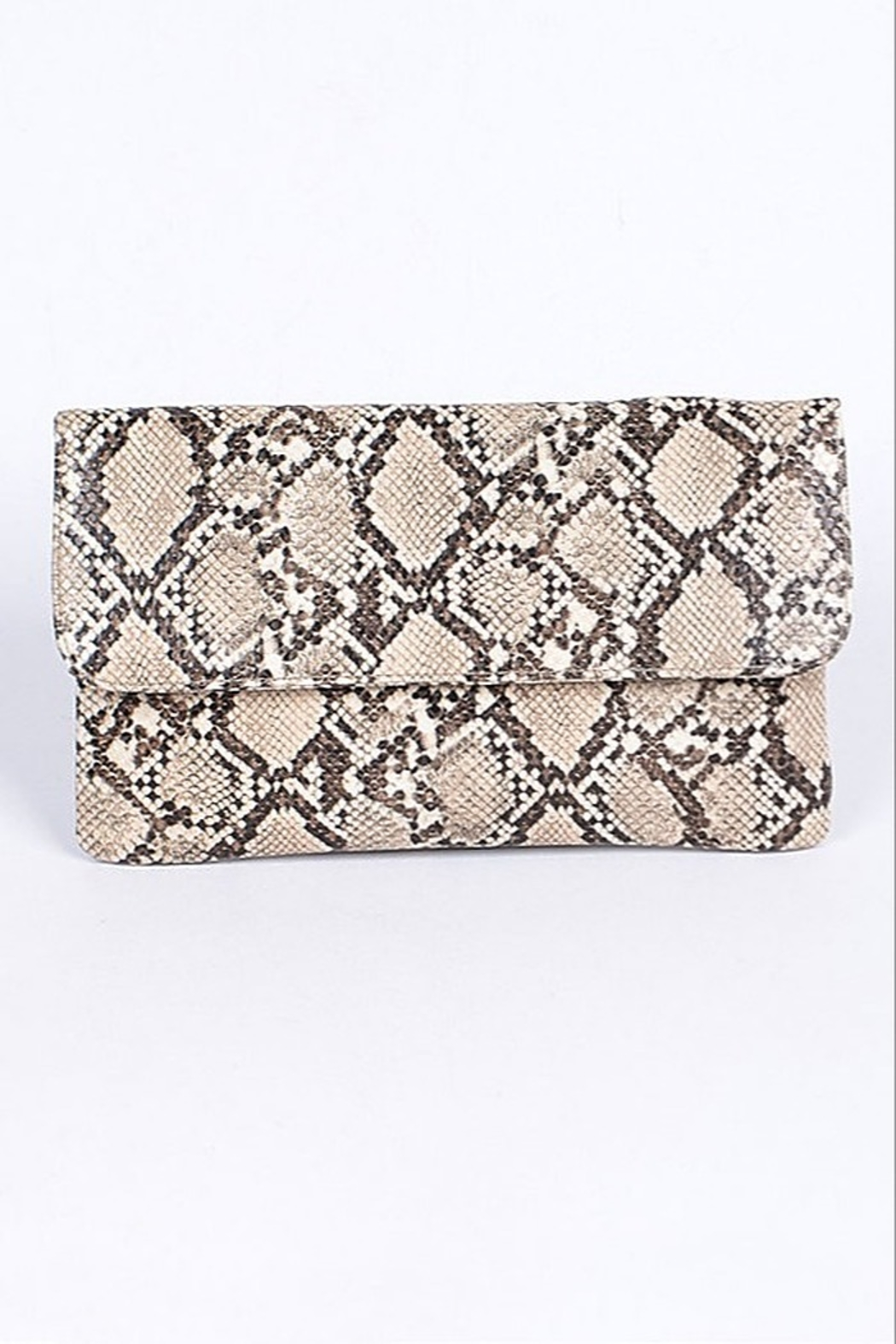 H & D Python Print Clutch - Front Cropped Image