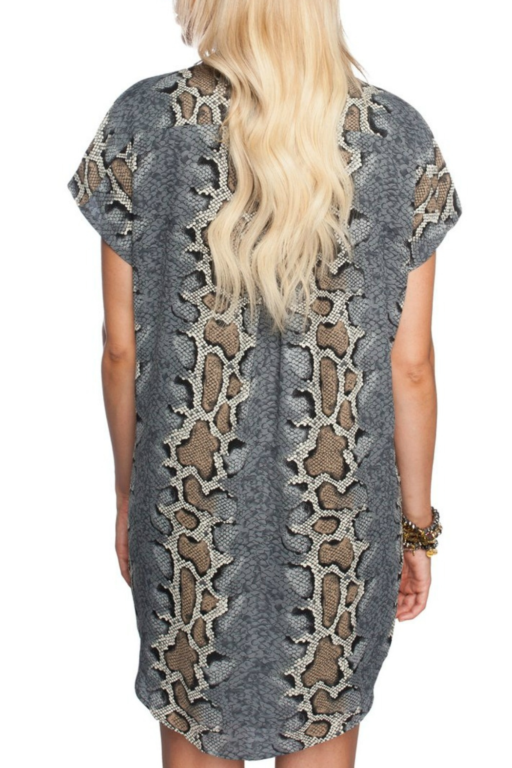 e8339a8ba0 Buddy Love Python Print Dress from Louisiana by Bella Bella - Bocage ...
