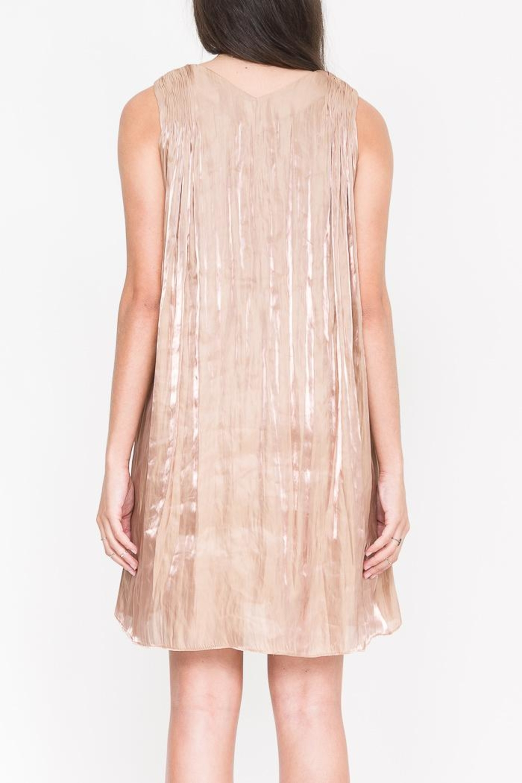 QUINN Geneva Pleated Dress - Side Cropped Image