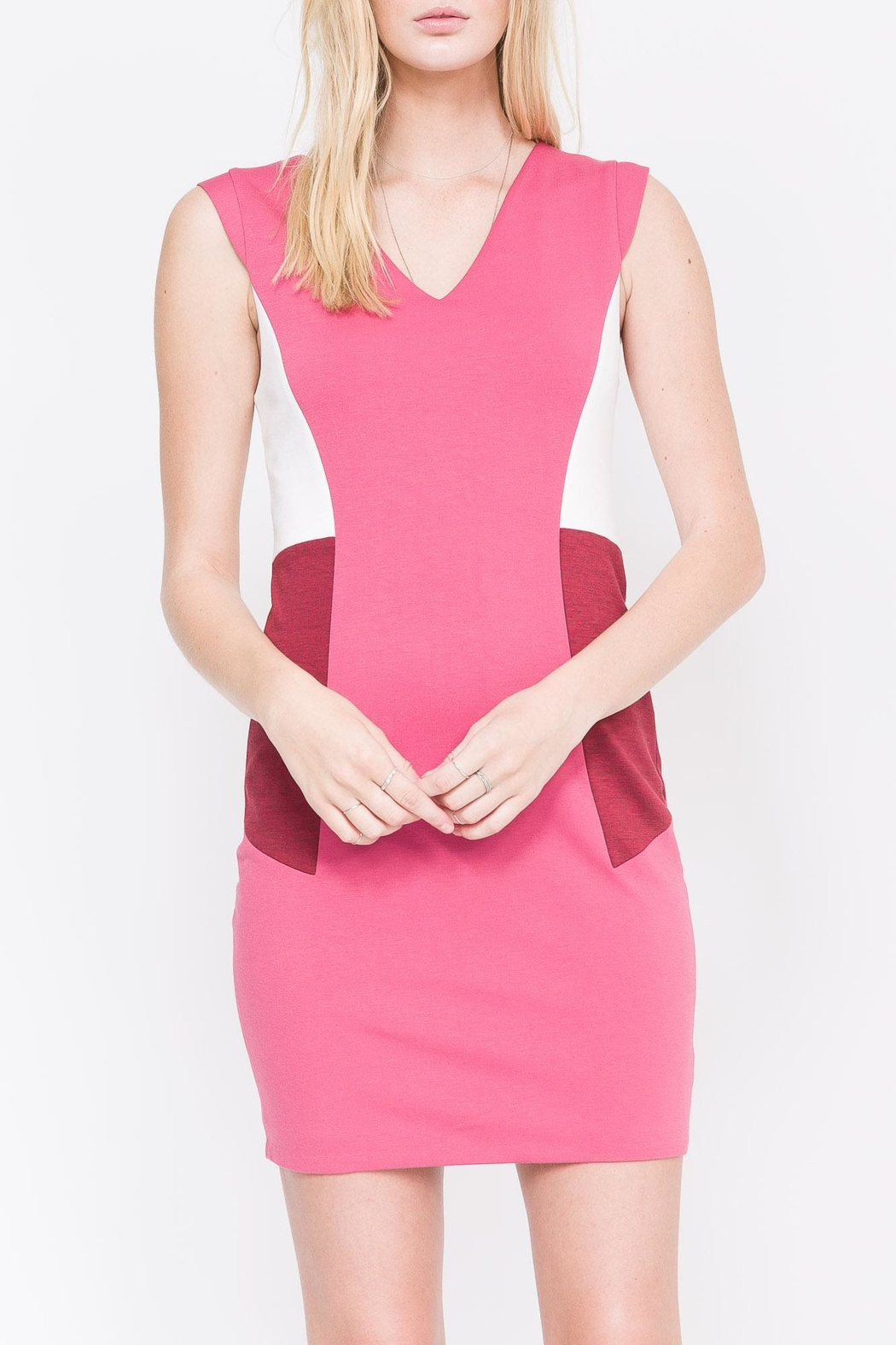 QUINN Nerissa Color-Blocked Dress - Main Image