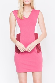 QUINN Nerissa Color-Blocked Dress - Front cropped
