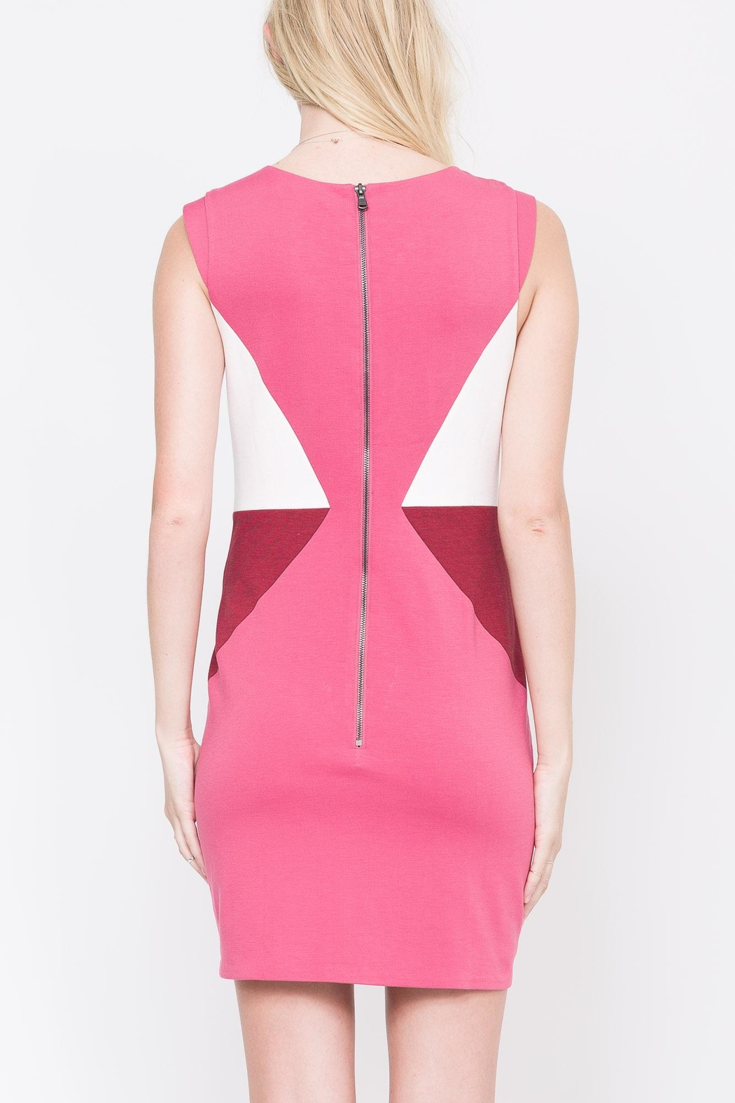 QUINN Nerissa Color-Blocked Dress - Side Cropped Image