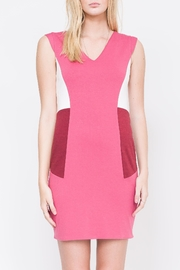 QUINN Nerissa Color-Blocked Dress - Front full body