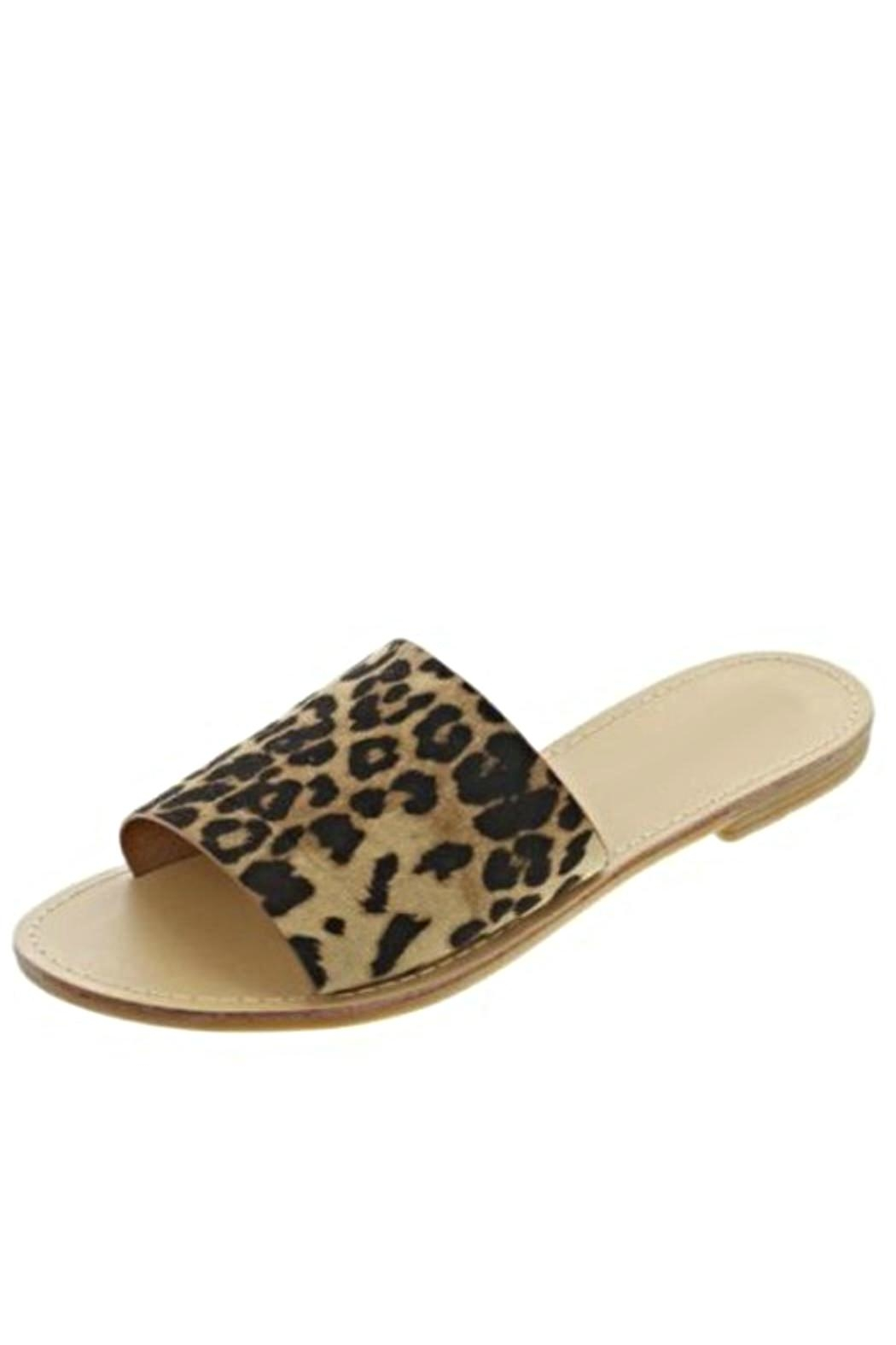 4d1be79adb8f Anna Shoes Leopard Print Slides from Texas by POE and Arrows ...