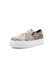 Qupid Royal Snake Sneaker - Product Mini Image