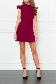 Rachel Zoe Parma Mini Dress - Product Mini Image