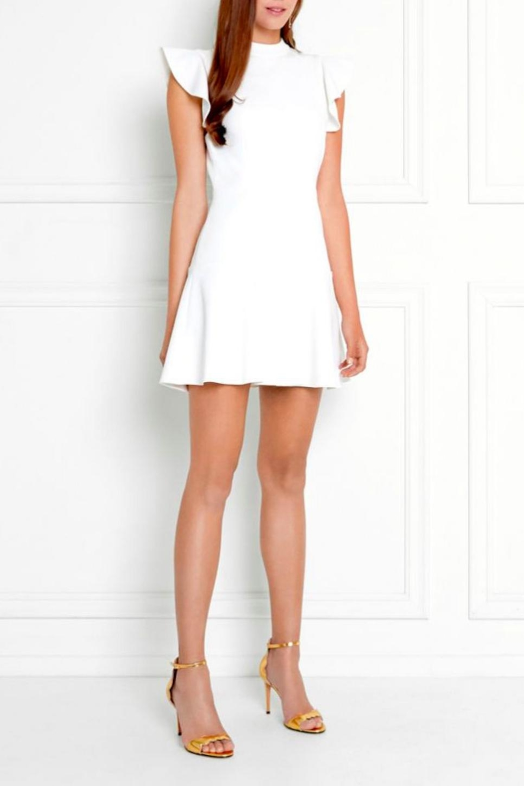 Rachel Zoe Rocco High Neck Dress - Front Cropped Image