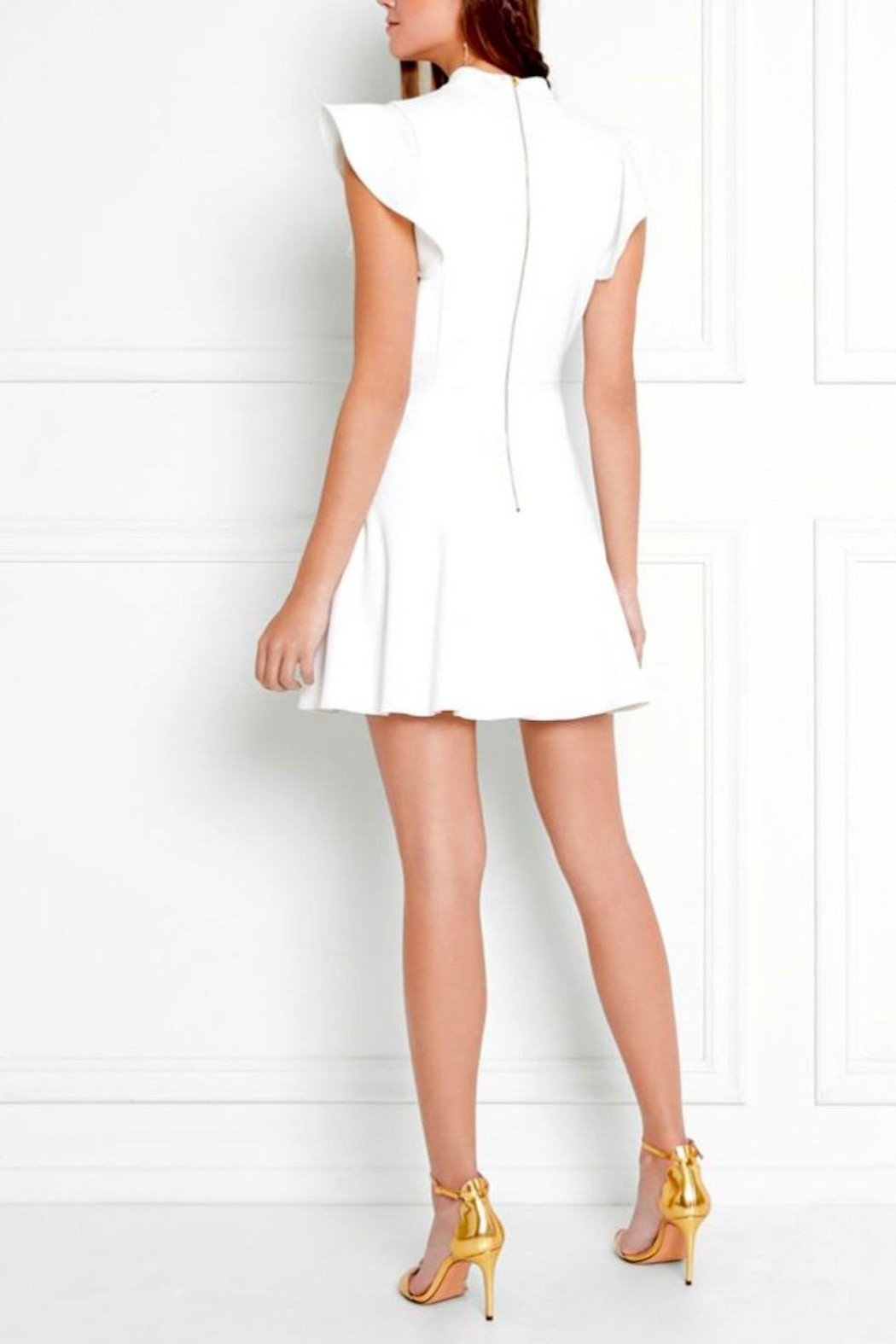 Rachel Zoe Rocco High Neck Dress - Back Cropped Image