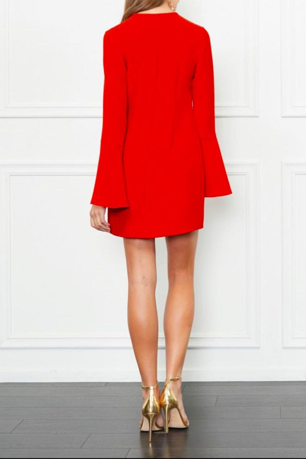 Rachel Zoe Ruffle Mini Dress - Front Full Image