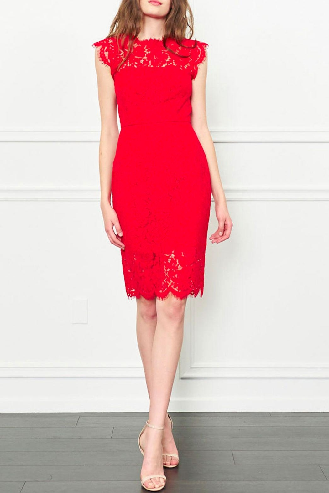 Rachel Zoe Suzette Lace Dress - Front Cropped Image