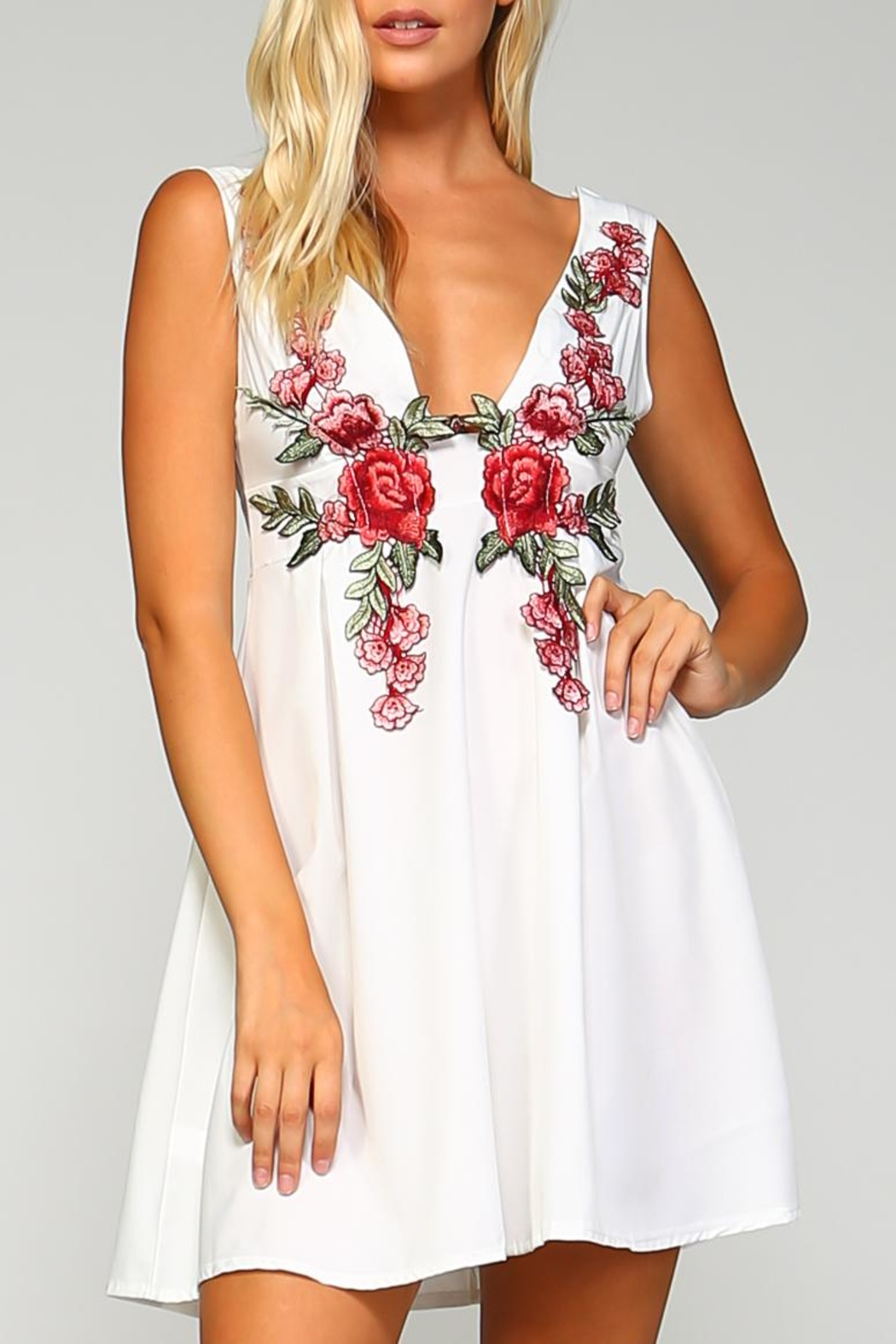 Racine Floral Embroidered Dress - Main Image