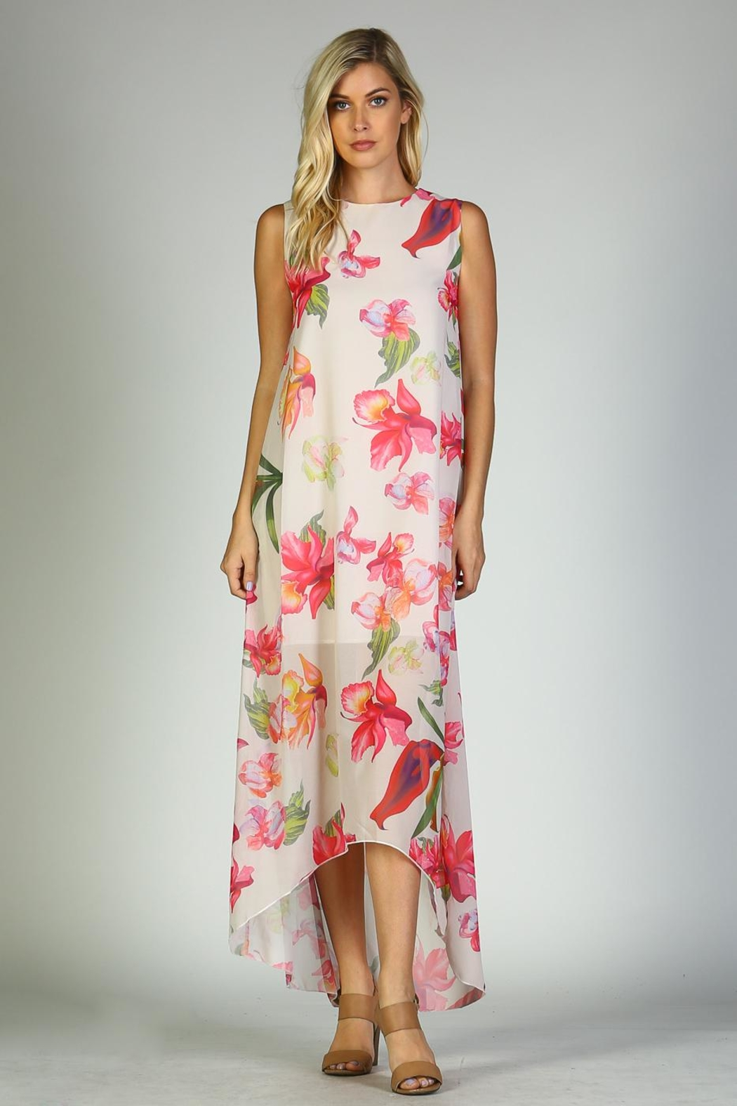 Racine Floral Maxi Dress - Front Full Image