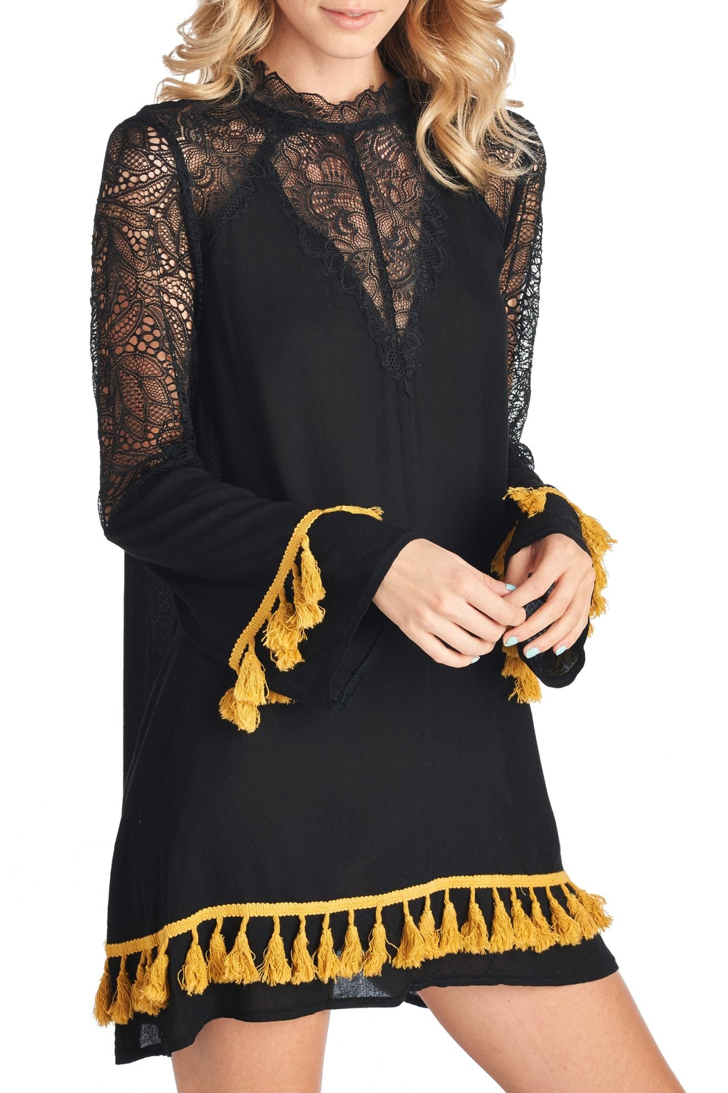 Racine Lace Tassel Dress - Front Cropped Image