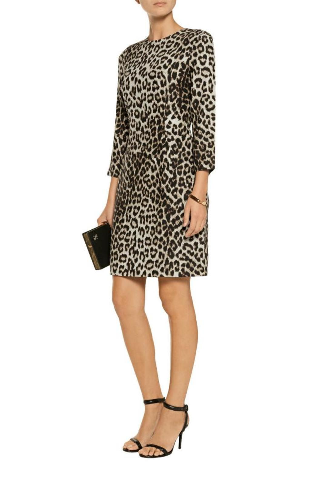 Rag & Bone Short Leopard Dress - Main Image