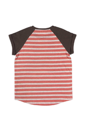 Paper Wings Raglan Cuff Tshirt- Sea Dog - Front full body