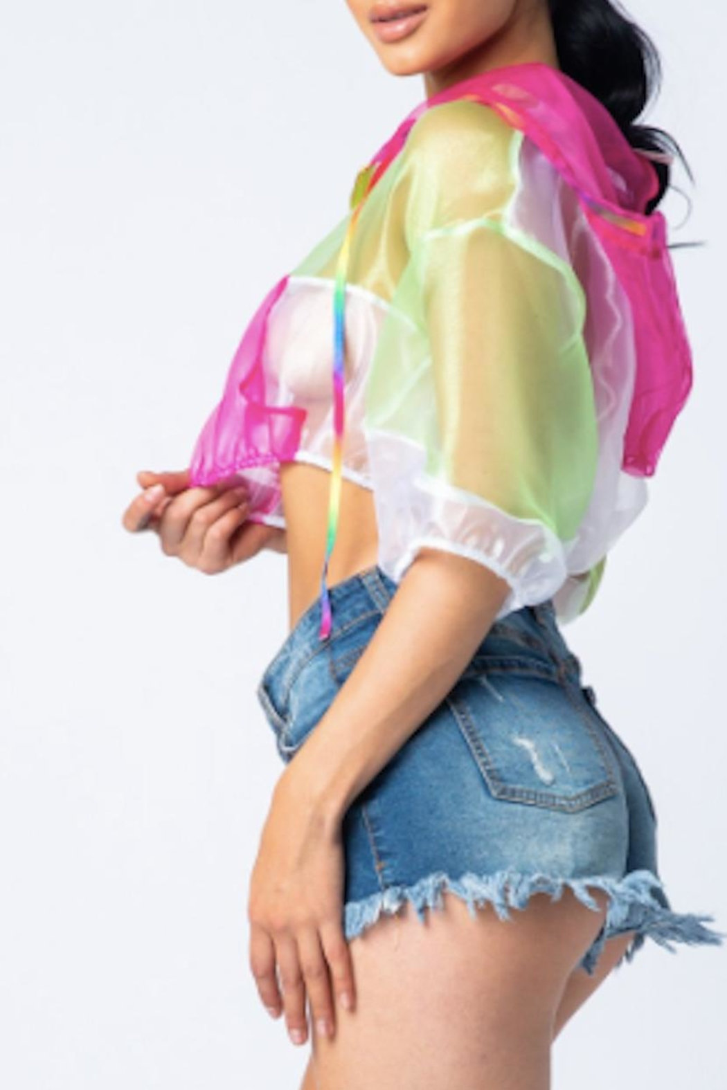 TIMELESS Rainbow Mesh Hoodie - Front Full Image