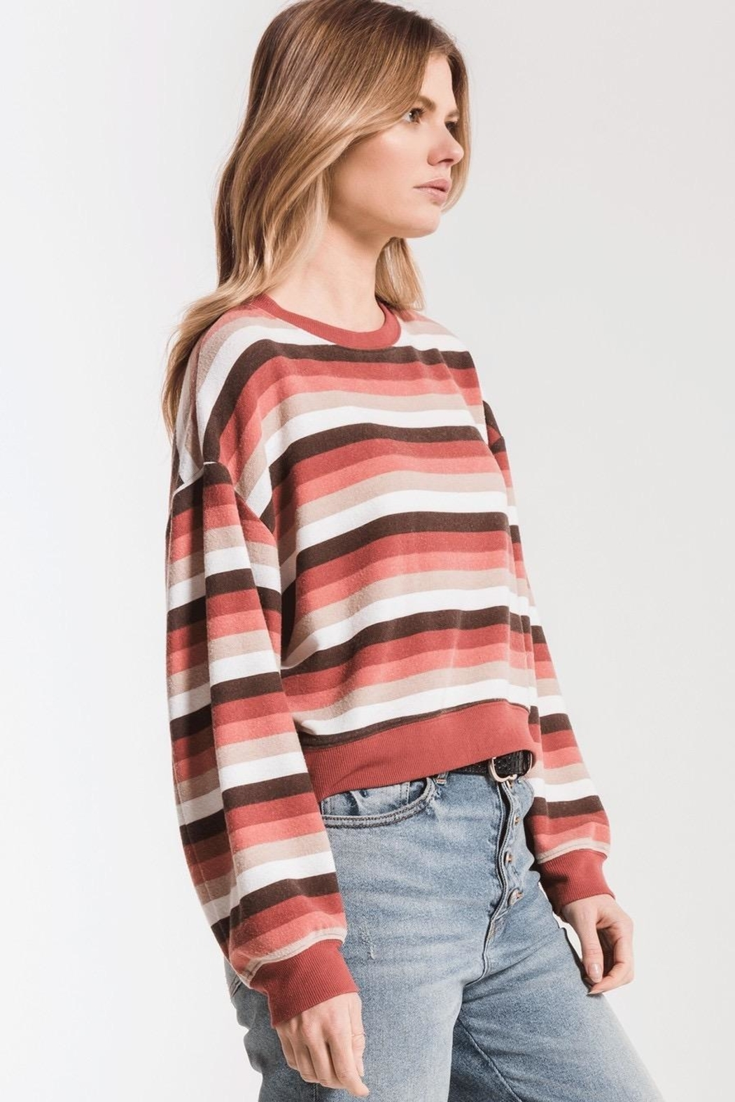 Zsupply Rainbow Stripe Pullover - Side Cropped Image
