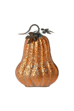 Shoptiques Product: 18.5 Pumpkin